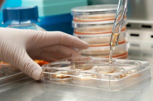 فراخوان حمایت از طرح های مقابله با ویروس کرونا اعلام شد