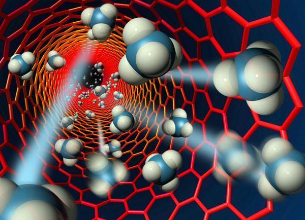 کاشت نانولوله های کربنی به ترمیم رشته های عصبی یاری می نماید